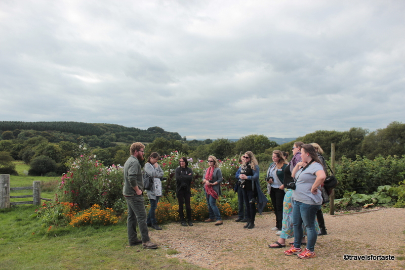 Guided tour of kitchen gardens at River Cottage HQ