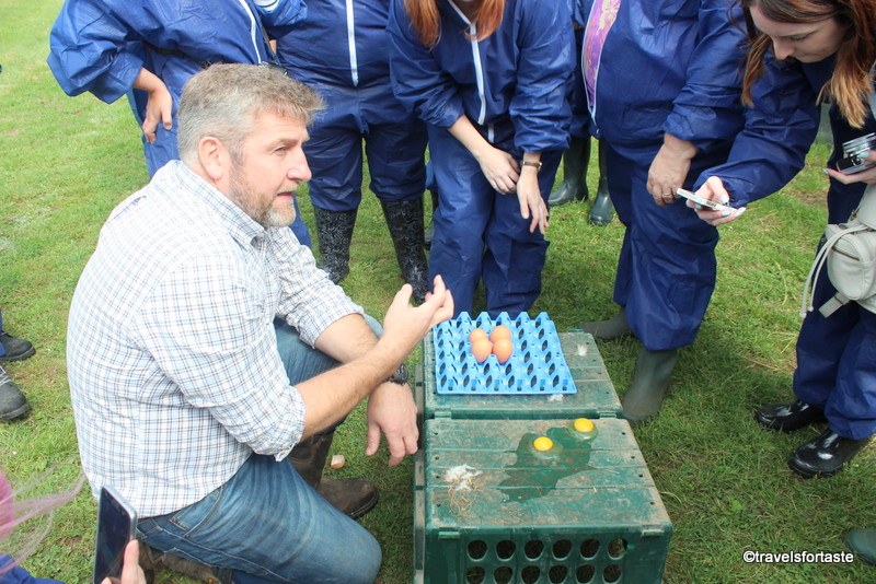 Jp explains why Happy Eggs are tastier because they are free range