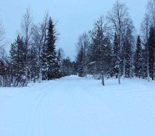 Lapland, Finalnd - Akaslompolo